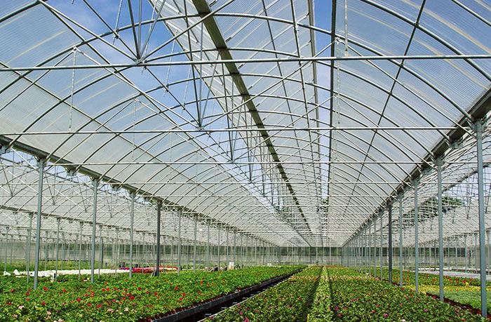 保定市生态园PC阳光板温室