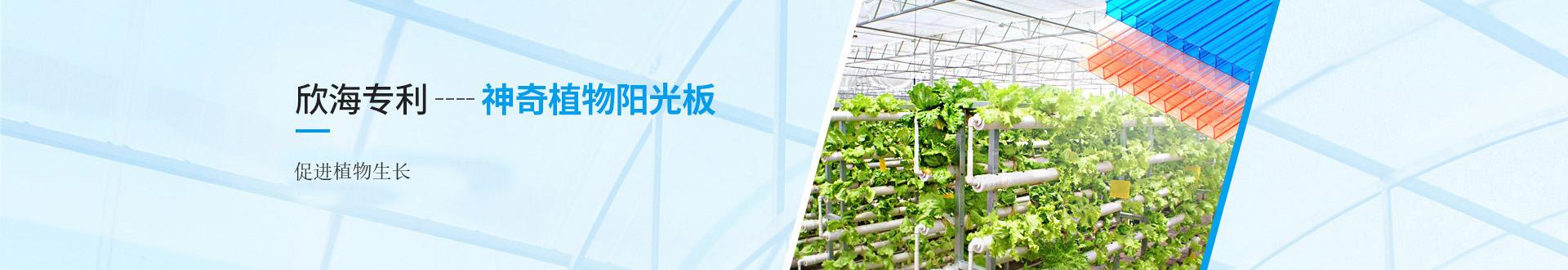 欣海专利,神奇植物阳光板